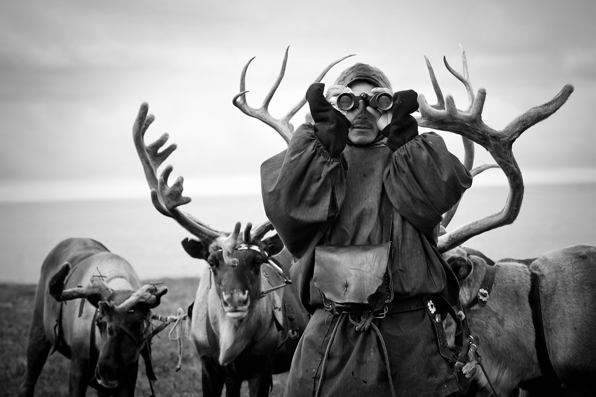 KSHMR Reindeer Herder Photo